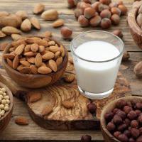 Leches sin lactosa: tipos y propiedades