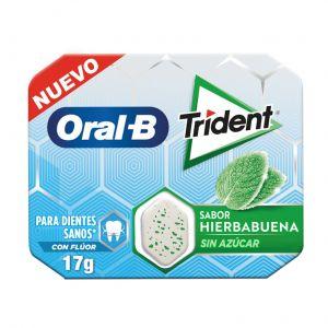 Chicle oralb hierbabuena trident 17gr