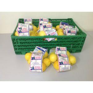 Limon    bolsa 1k aprox