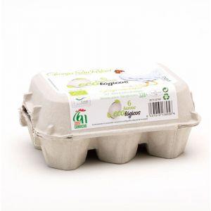 Huevos ecologico san rafael  6ud