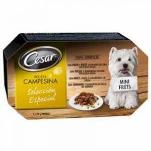 Comida perro campesina cesar multipack