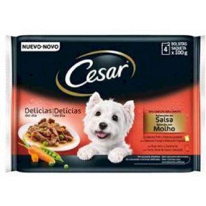Comida perro pedigree pollo/buey/verdura pedigree p4x100g