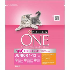 Comida gato junior pollo arroz one  450g