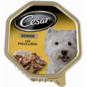 Comida perro senior cesar 150g