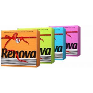 Servilleta color renova 1 c 70 unidades