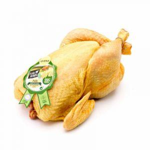 Pollo amarillo alimentación certificada 100% vegetal