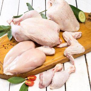 Contramuslo de pollo