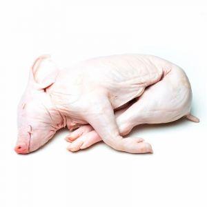 Lechón segoviano pequeño 3-4kg aprox.