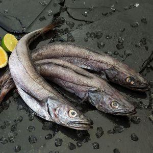 Pescadilla 700-800g    granel