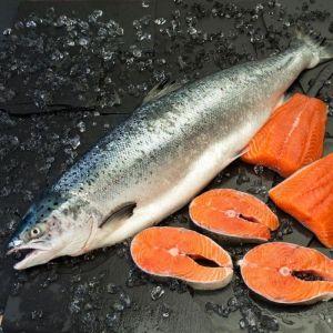 Salmon entero    4-6k