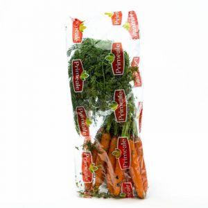Zanahoria    manojo 1k aprox