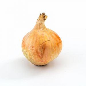 Cebollas  ecologica  bandeja 500g