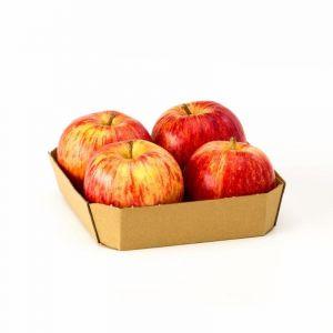 Manzana roja ecologica  bandeja 550g