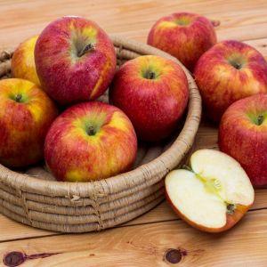 Manzana envis   granel
