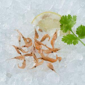 Camarones cocidos congelado granel