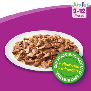 Comida húmeda para gatos junior aves casserole pack de 4 unidades de 85g