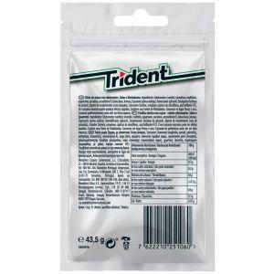 Chicles sin azucar hierbabuena trident  30grageas