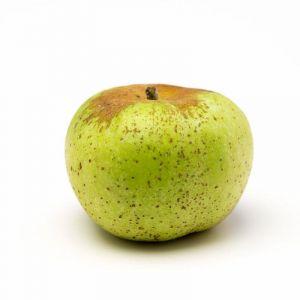 Manzana reinetas   granel