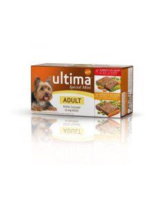 Comida perro adulto ultima 15x1