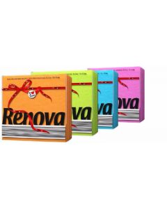 Servilleta color renova 1 c 70 unidades