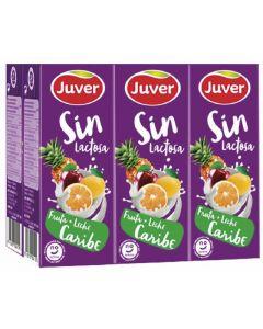 Bebida funcional de frutas y leche sin lactosa caribe juver pack de 6 unidades de 20cl
