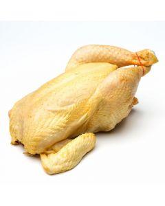 Pollo amarillo alimentacion certificada 100% vegetal