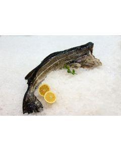 Bacalao noruego    1-2k