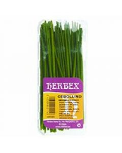 Cebollino herbex 25g
