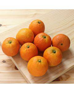 Mandarina jimenez   granel