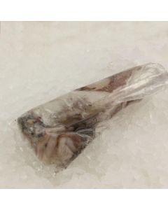 Calamar potera  barea  granel
